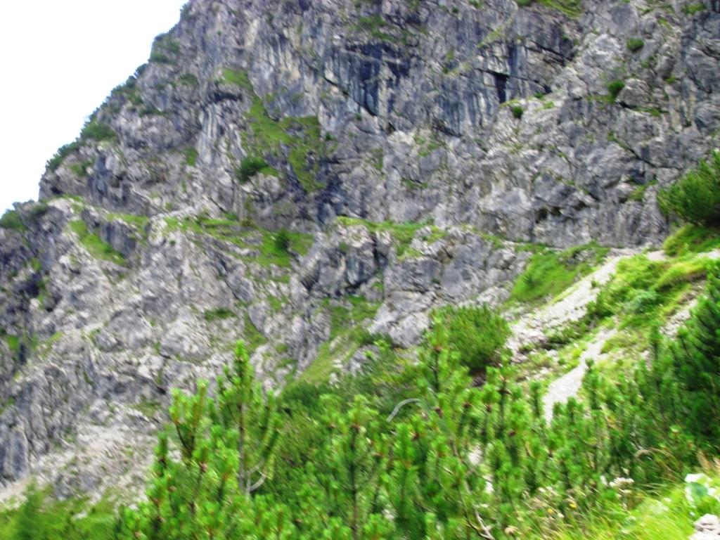 Aufstieg zum Schrofenpass