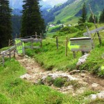 Abfahrt vom Schrofenpass Richtung Warth